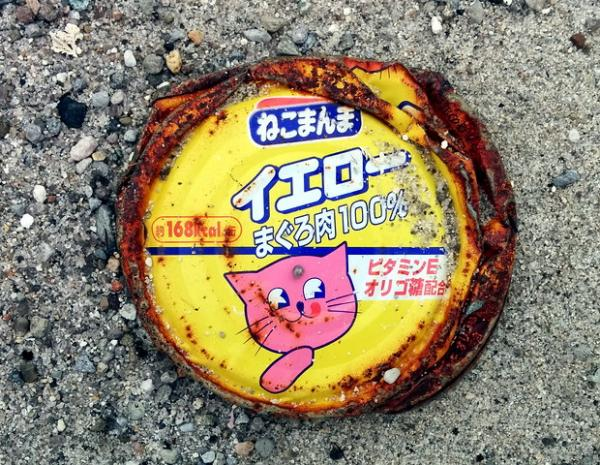Amazing International Cat Food Cans - Japan