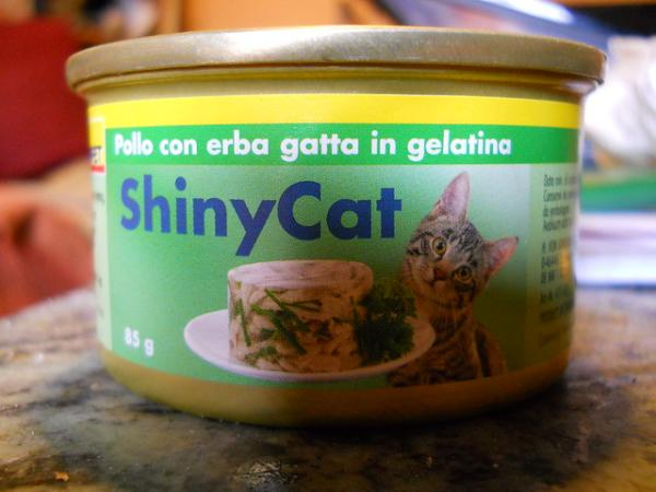 Amazing International Cat Food Cans - Italy