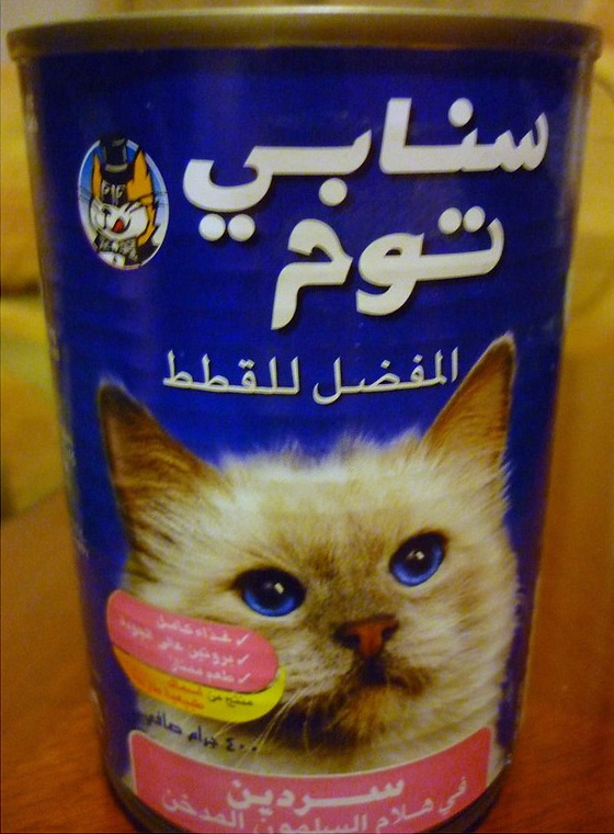 Amazing International Cat Food Cans - UAE