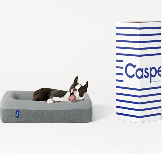 Casper memory foam dog beds