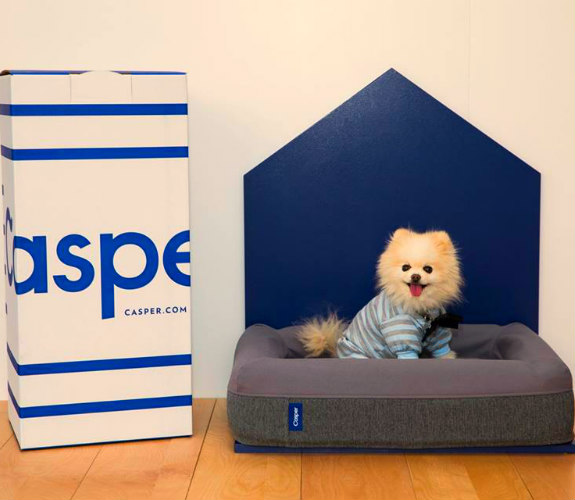 Casper memory foam dog mattresses