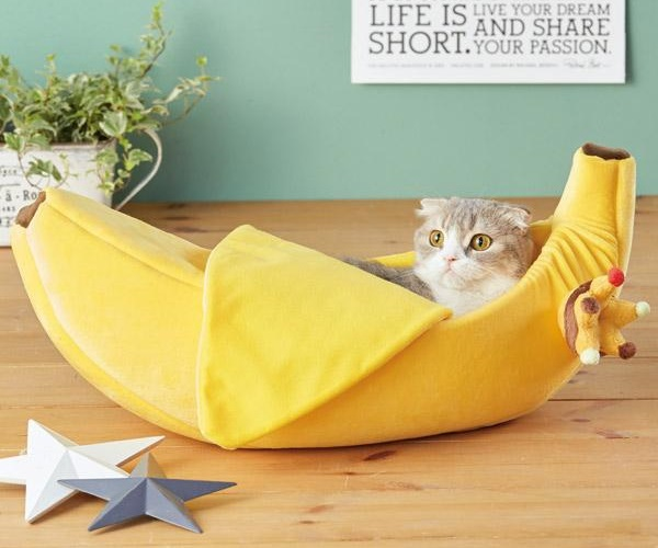 Cat Banana Bed Is A Great Place To Go To Slip