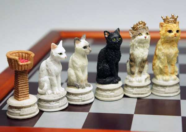 Cats Dogs  Cast