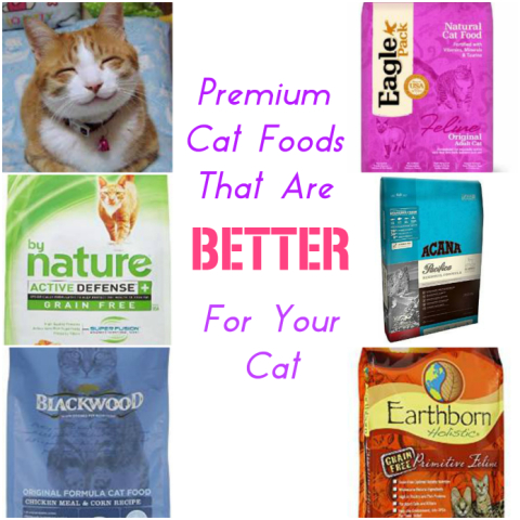 For cat food premium sex for that