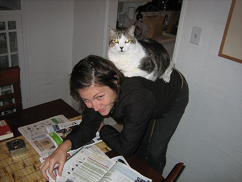 cat on your back