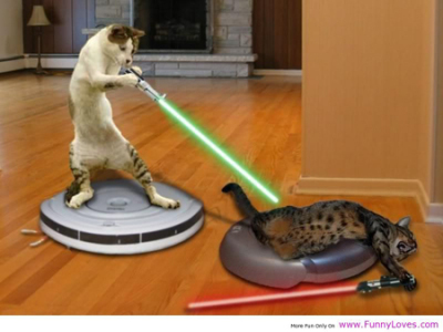 Cat Wth Laser: Source: Funnyloves