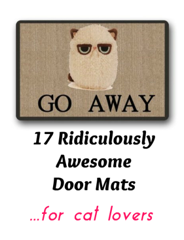 Cat Lovers Enter Here 17 Ridiculously Awesome Cat