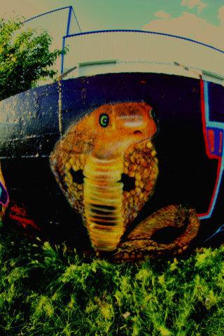 Cobra by Chromers: Snake Graffiti Art by Chromers