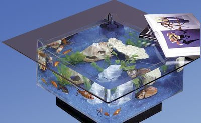 Midwest Tropical 675 Square Aquarium Coffee Table