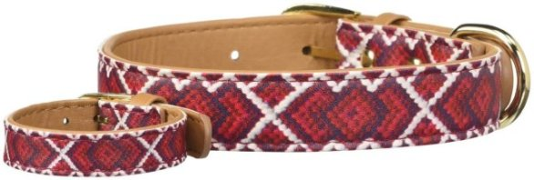 Dog Friendship Collar