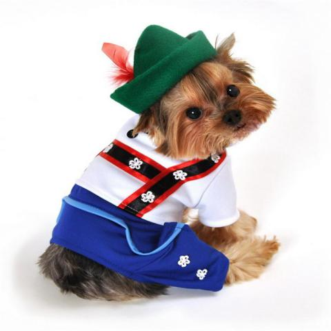 Cute Dog Costume Lederhosen