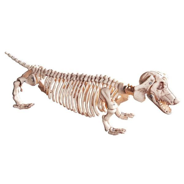 Dachshund Halloween Skeleton