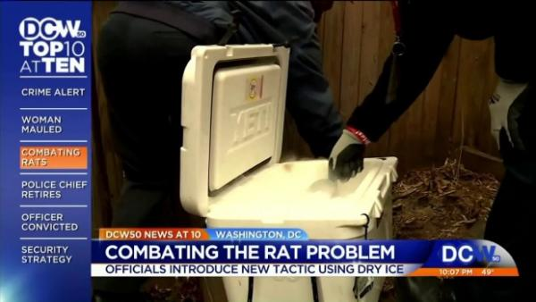 Washington D.C. Finds New, Effective, Humane Way To Put Rats On Ice