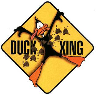Daffy Duck Crossing!