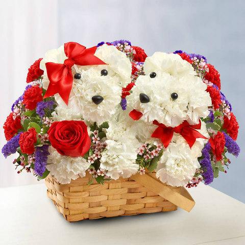 Adorable Doggy Flower Baskets: Flower arrangements shaped like dogs (image via 1800flowers Facebook)