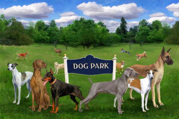 Derry Township Dog Park, Pa