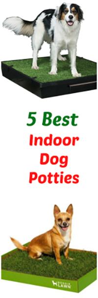 5 Best Indoor Dog Potties