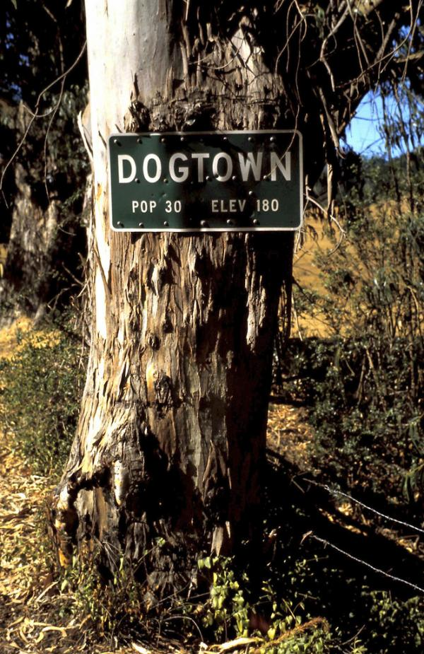 10 Real Places Named After Dogs - Dogtown, Marin County, CA