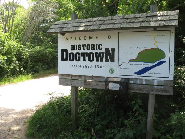 10 Real Places Named After Dogs - Dogtown, Cape Ann, MA