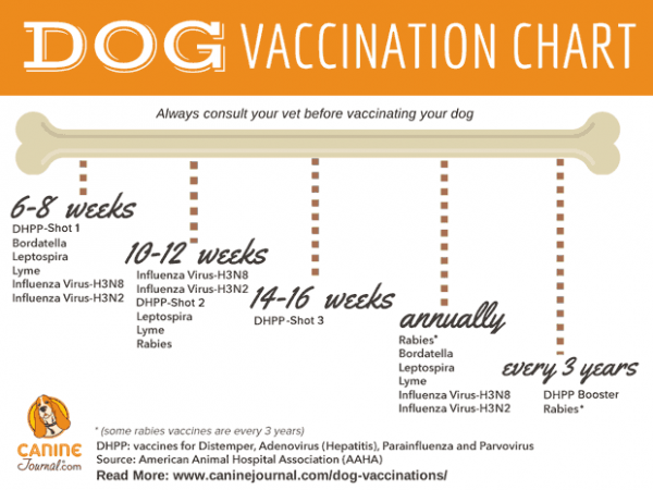 Dog Vaccination Chart