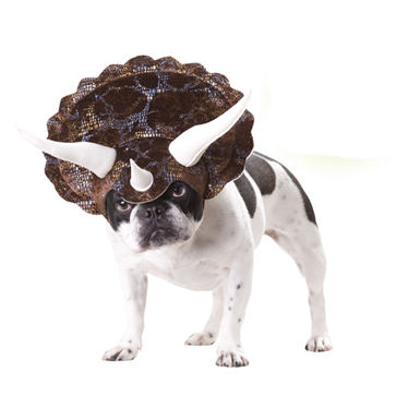 Triceratops Dog