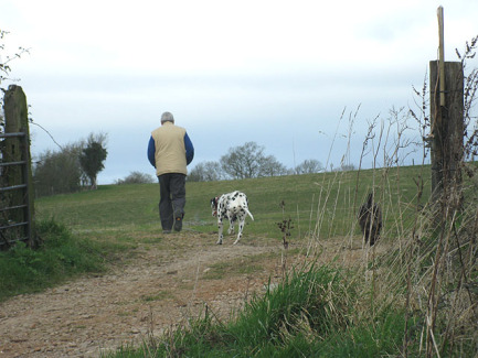 Walking the Dogs (Photo by Pauline Eccles/Creative Commons via Wikimedia)