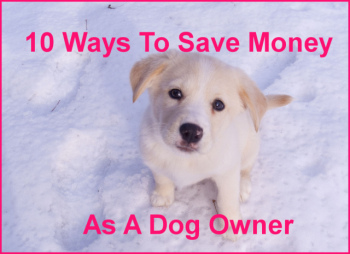 Save Money on Dogs 2