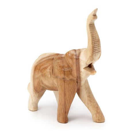 Elephant Whistle