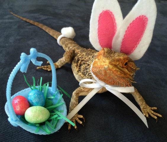 Easter Lizard (Image via Etsy)