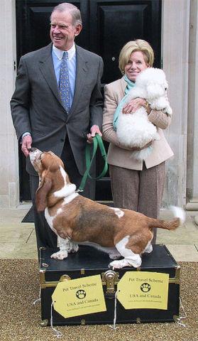 Expatriate Pets in England (Public Domain Image)