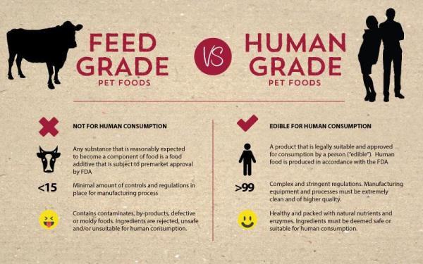 Why Is Pentobarbital, The Euthanasia Drug Added to Dog Food?