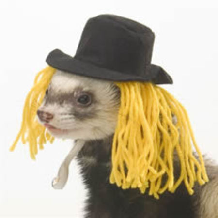Ferret scarecrow hat and wig