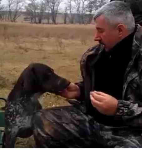 Tsar Gets A Treat From His Owner (You Tube Image)