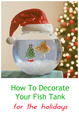 Need tips and ideas for decorating your fish tank for the holidays? There's  not much out there commercially in terms of Christmas - Clever Ideas For How To Decorate Your Aquarium For The Holidays