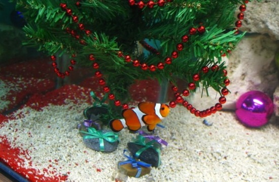 Clever ideas for how to decorate your aquarium for the for Aquarium christmas tree decoration