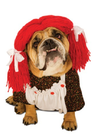 Rag Doll, Raggedy Ann, Dog Costume