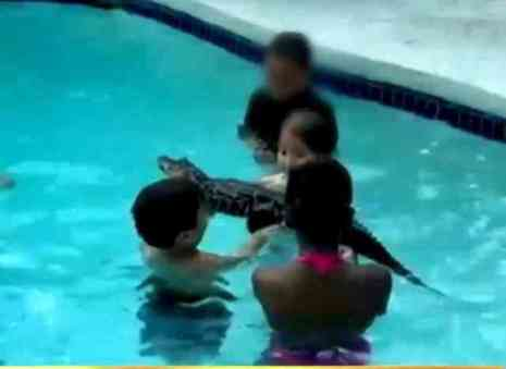 Pool Party with Alligator Adventure (You Tube Photo)