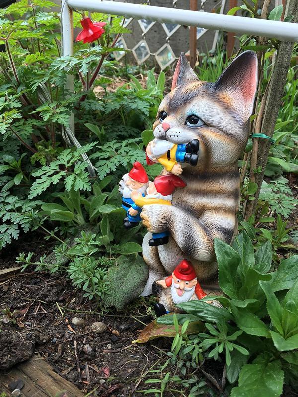 Your Answer To Those Pesky Garden Gnomes Petsladycom