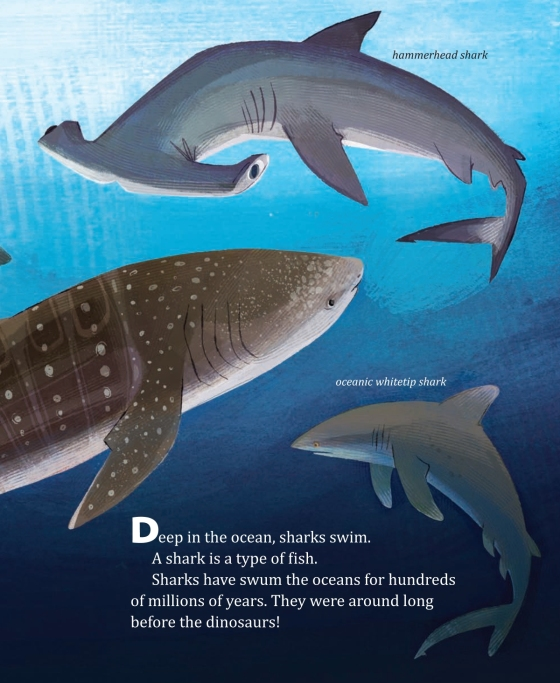 My Little Golden Book About Sharks