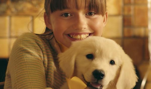 New Marshmello Music Video Is Doggone Touching | Petslady com