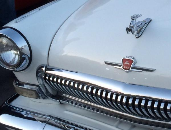 The Top 10 Animal Auto Hood Ornaments