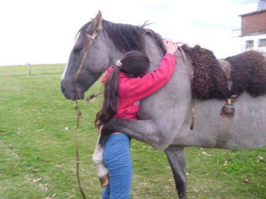 Horse Hug (Image via Green Renaissance)