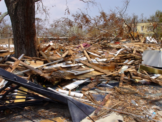 Keeping pets safe from post-hurricane damage