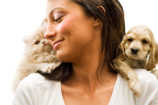 Favorite valentine's day companions?: image via petfooddirect.com