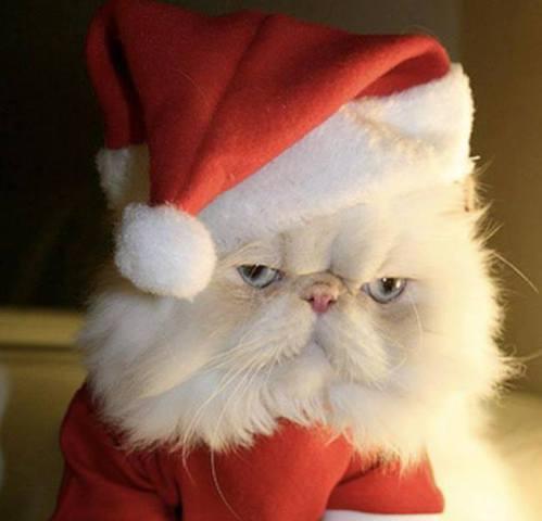 Grouchy Santa Claws (Image via I Love Christmas)