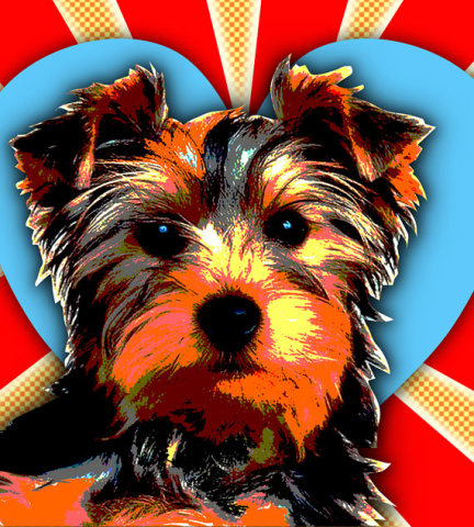 Pop Art Pet Portraits by RuffStuffDog
