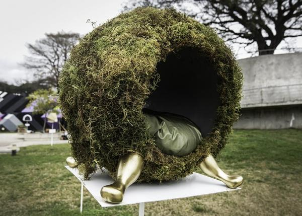 Natural Moss Pet Bed, Design by Estudio Maleza