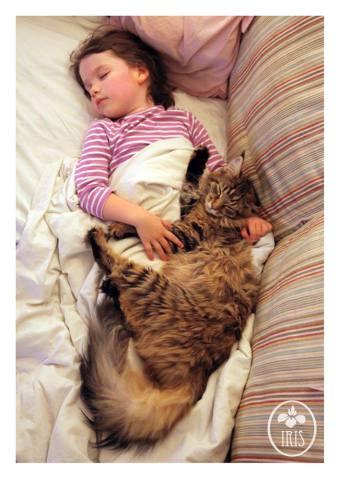 Thula and Iris Napping (Image via Faceboook)
