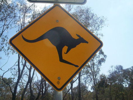 Kangaroo Crossing Sign (Photo Source: GNU/Creative Commons via Wikimedia)