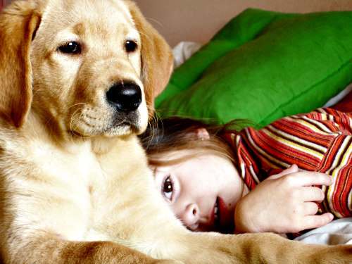 New Study Shows Kids With Pet Dogs Are Less Anxious: Kids & dogs